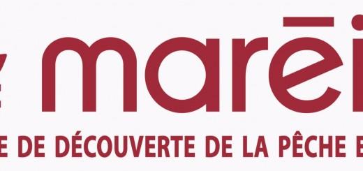 mareis_logo