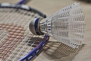 badminton-1019110__180-800x600
